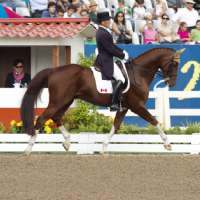 Tom Dvorak and Viva's Salieri WWin Team Silver - 2011 Pan American Games